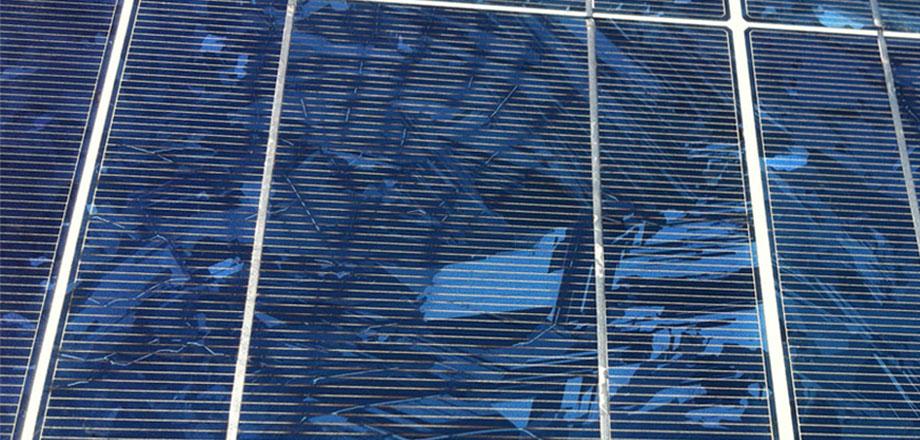 Solarmodul mit Schneckenspuren